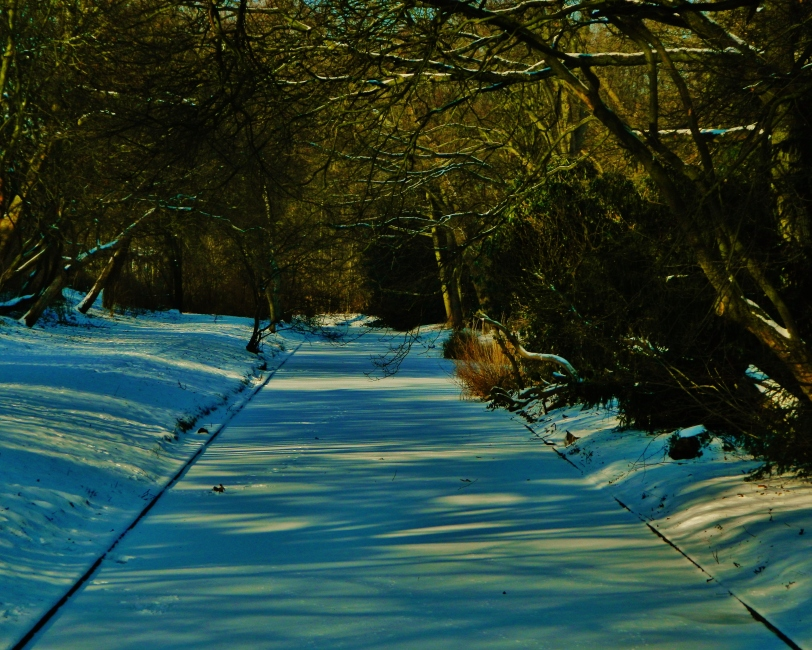 A frozen canal