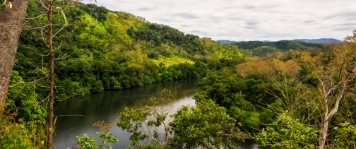 Bloomfield River on the way to Cooktown. Photo by Veronica Lopez