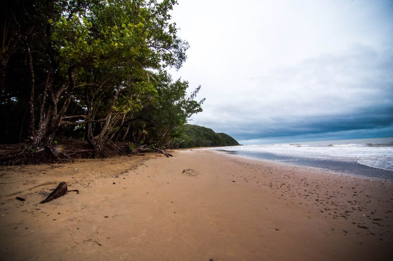 Cape Tribulation at Daintree National Park - Far North Queensland