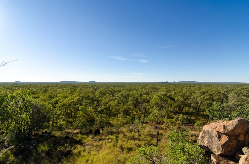 Undara National Park. Photo by Mario Sainz Martinez